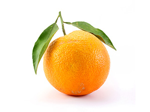 Oranger-doux.jpg